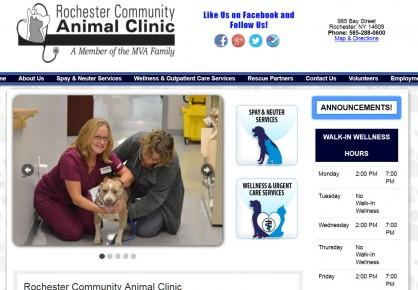 RochesterCommunityAnimalClinic.com web design by 6x6 Design, LLC