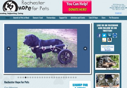 Rochesterhopeforpets.org web design by 6x6 Design, LLC